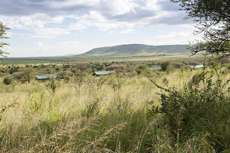 nyikani-banagi-hill-camp-bushveld-6